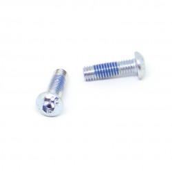 SLICK HARDWARE Frames Mounting screw x1